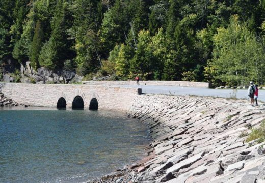 Otter Cove study proposal approved